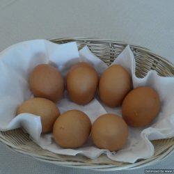 hotel-careggi-firenze-colazione-uova-sode